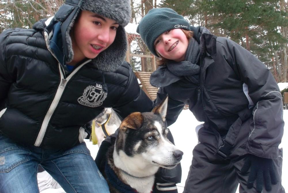 Côtoyer les huskies, c'est possible dans cette colonie de vacances