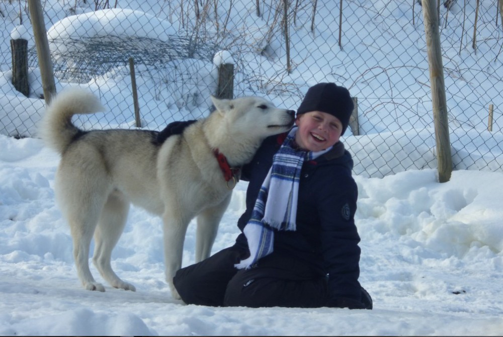 La neige, avec un chien de traineau, c'est super !
